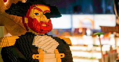 Pirate made from LEGO bricks