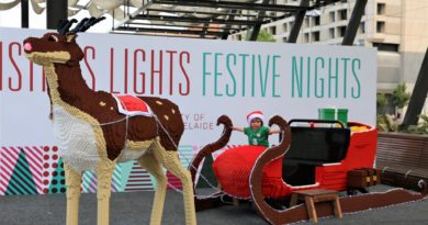 Southern Bricks presents… Rudolph & Santa's Sleigh built out of 150,000 bricks of Lego!